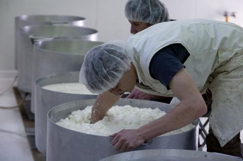 Fabrication artisanale du fromage de brebis des Pyrénées [Béarn].