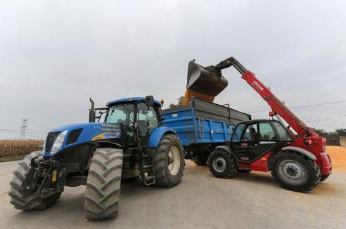 Agriculture en Béarn.