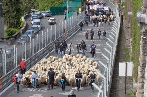 Manifestation anti-ours à Pau, Béarn, Pyrénées-Atlantiques.
